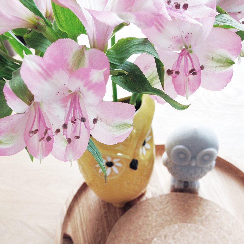 owls, designers at home, caren berry interview, uk surface pattern designers