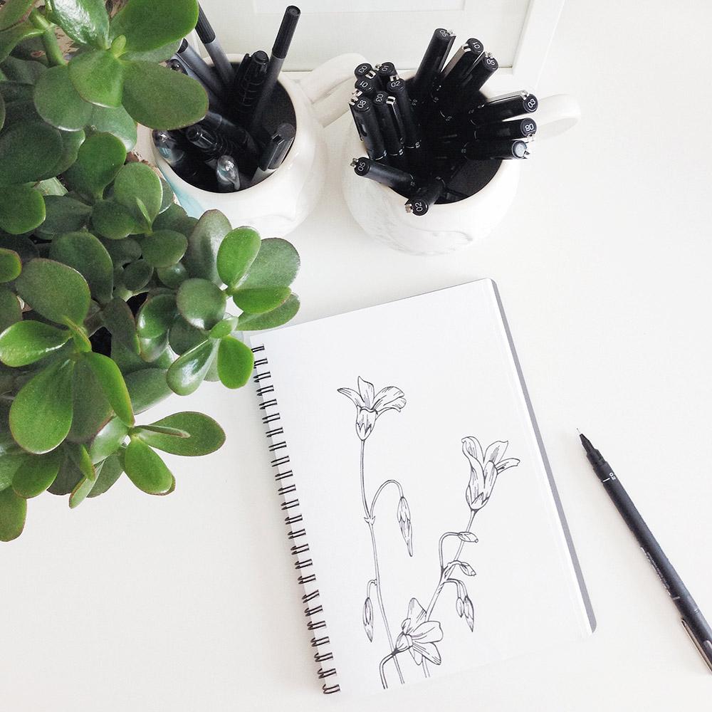 sketchbook, caren barry, flower drawings, flower pattern, floral surface pattern design