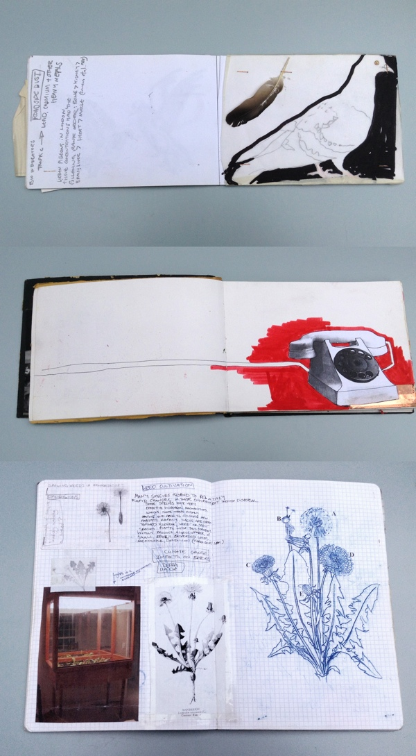 ceramics, sketchbook, Glazed and Confused
