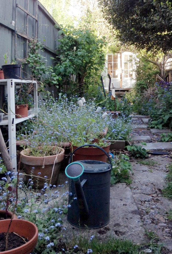 garden studio, Glazed and Confused Ceramics