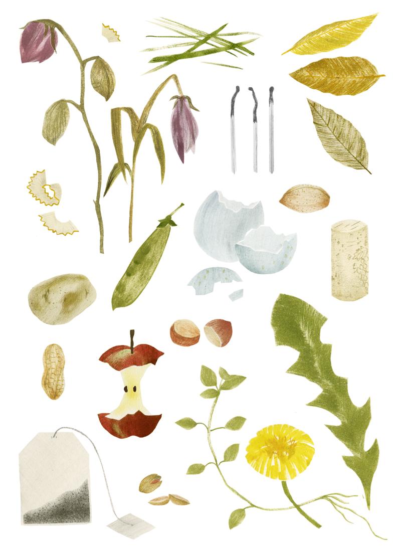 garden illustration, hannah bailey, HB illustration, free calendar