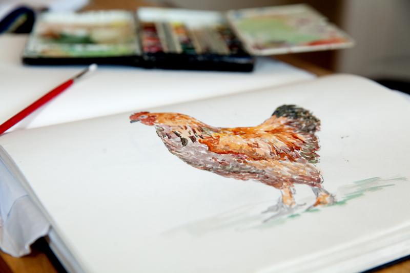 hen watercolour painting