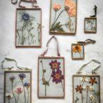Botanical tales,