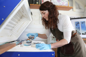 Meet Verity Pulford – capturing the Welsh landscape in glass