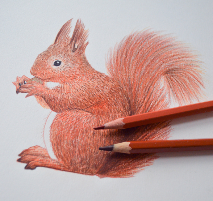 squirrel drawing, The Catkin Boutique, illustrated jewellery, cute animal jewellery, interview