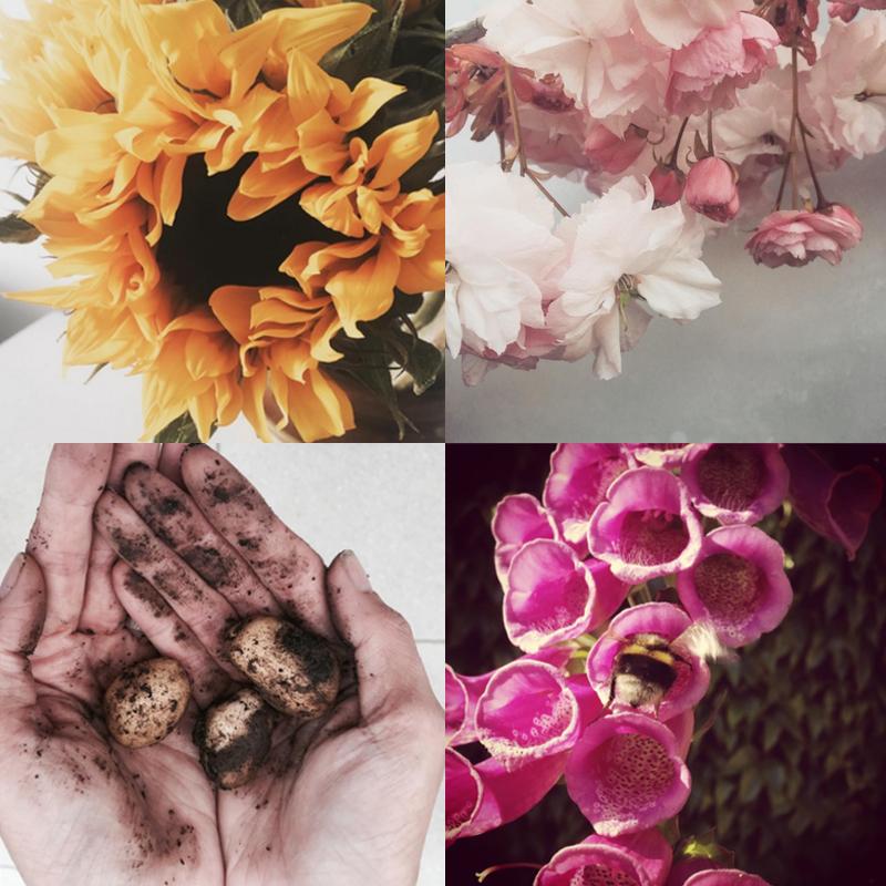paper flowers, paper flower bouquet, paper flowers uk, paper flowers wedding, paper bea company, paperbea company, Helen Wilde