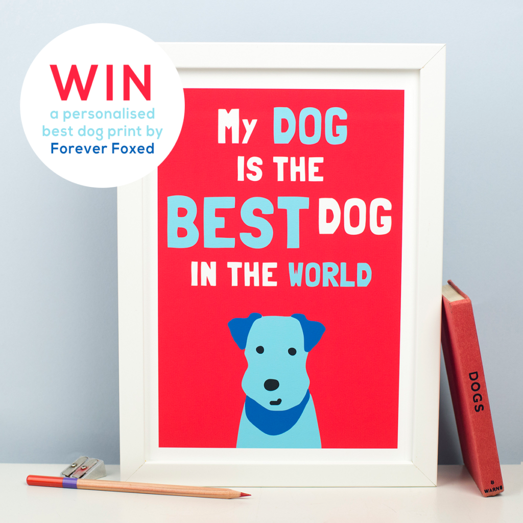 gifts for dog lovers, gift ideas for dog lovers, forever foxed, giveaway, competition, best dog art print,