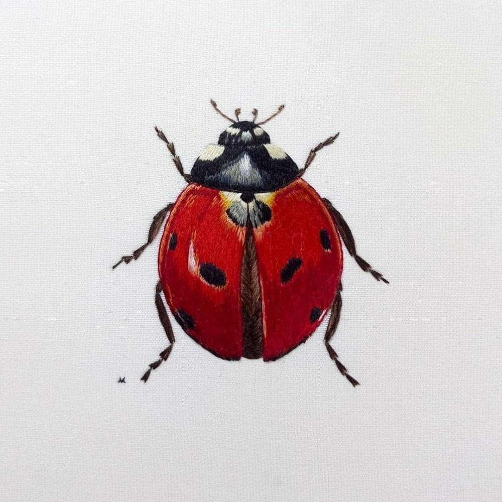 ladybird embroidery, embroidery art, embroidery, embroidery artist, Victoria Matthewson, ladybug embroidery,