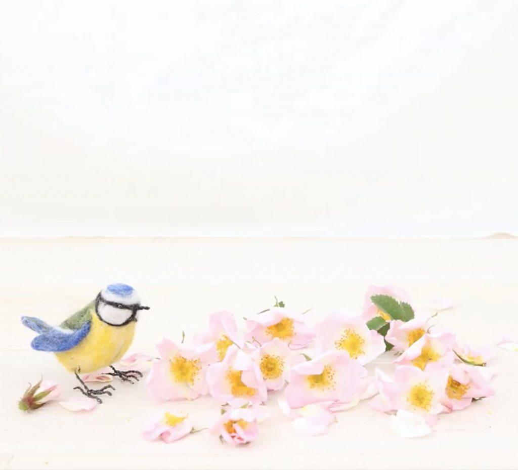 Blue Tit and Rose Petals
