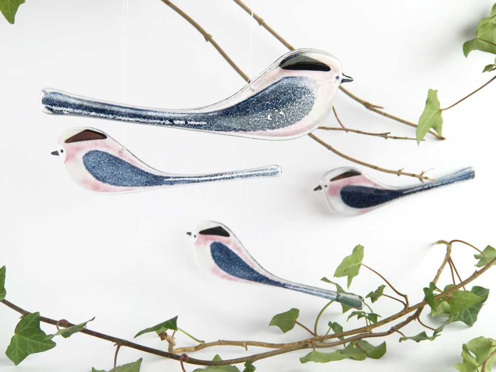 Robyn Coetzee long tailed tits