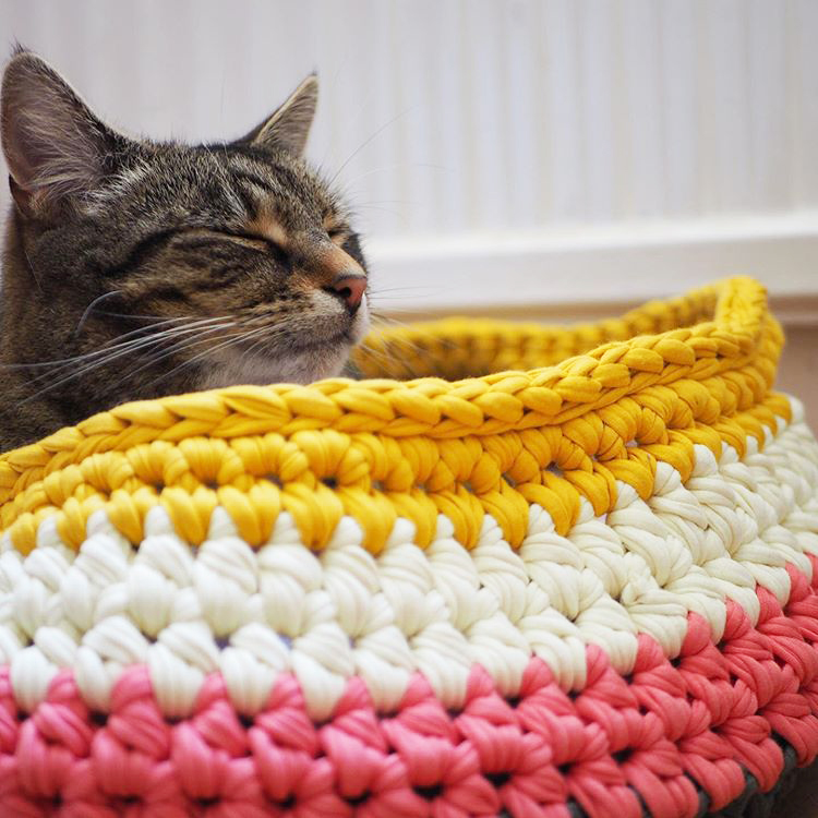Crochet Cat Basket by Clare Gets Crafty