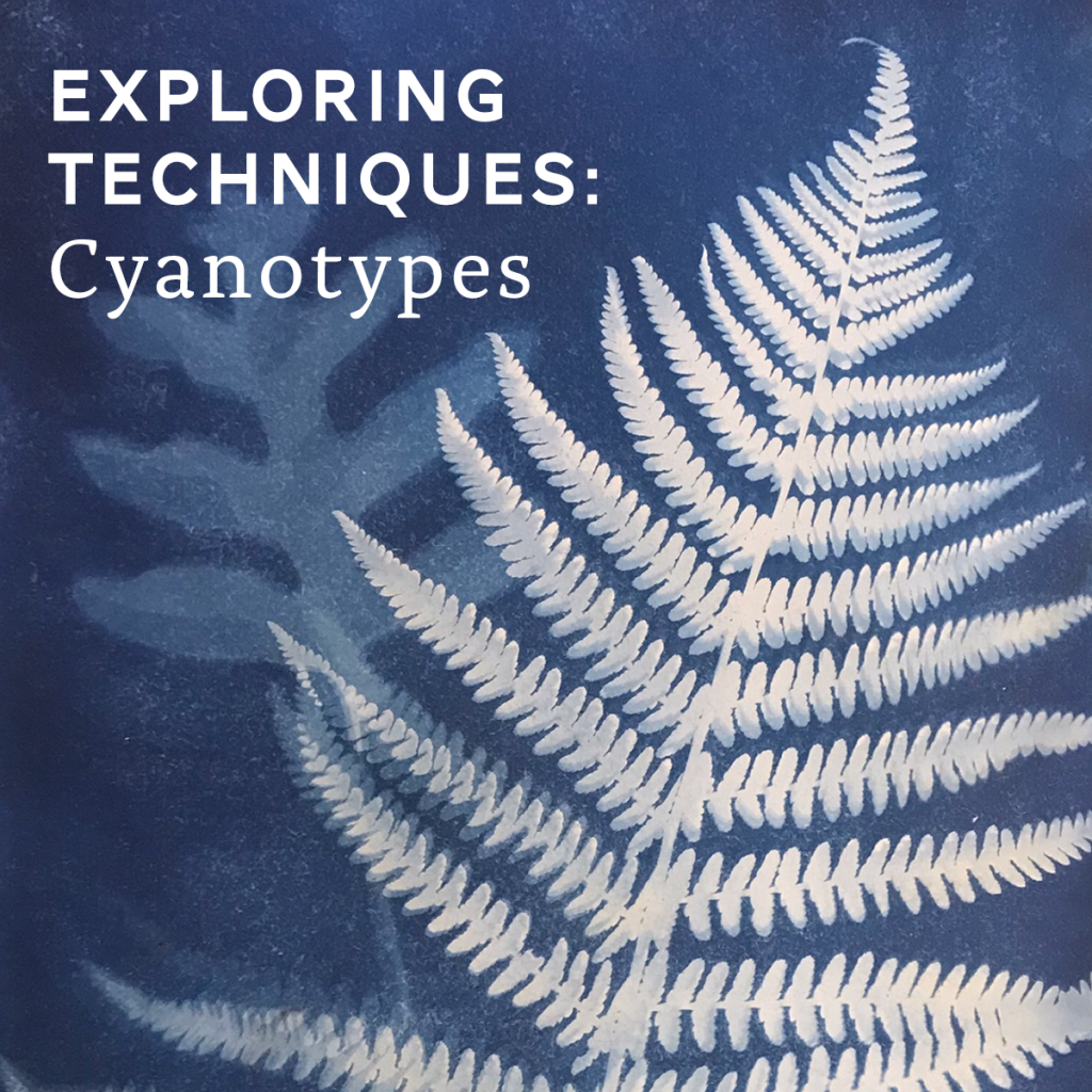 what are cyanotypes