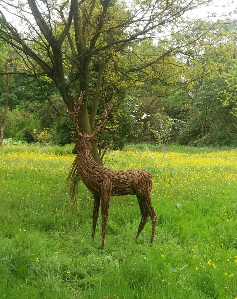 Willow stag sculpture by Anna and the Willow