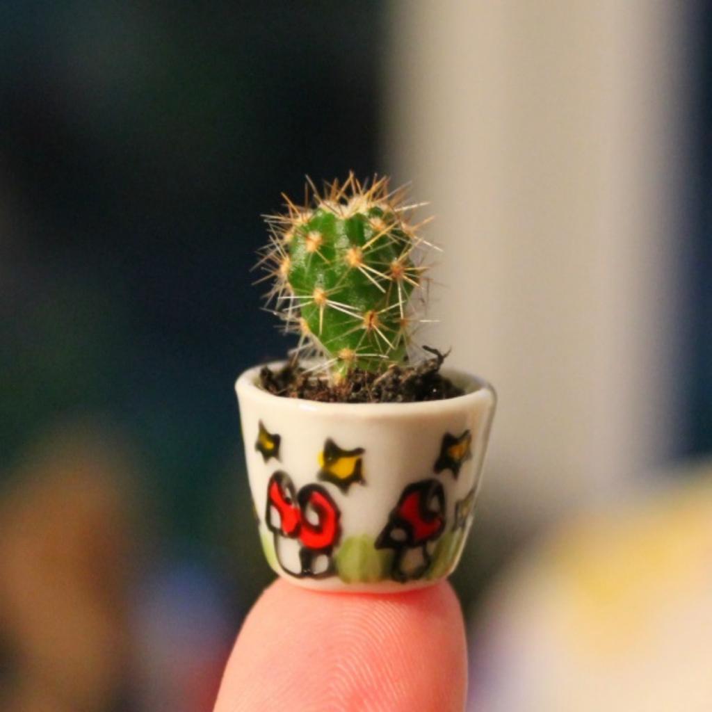 dolls house miniature cactus plant pot